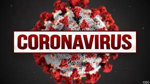 Investigative journalism in the era of the corona virus